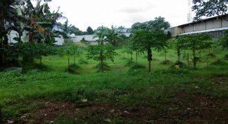 Tanah Alam Sutera